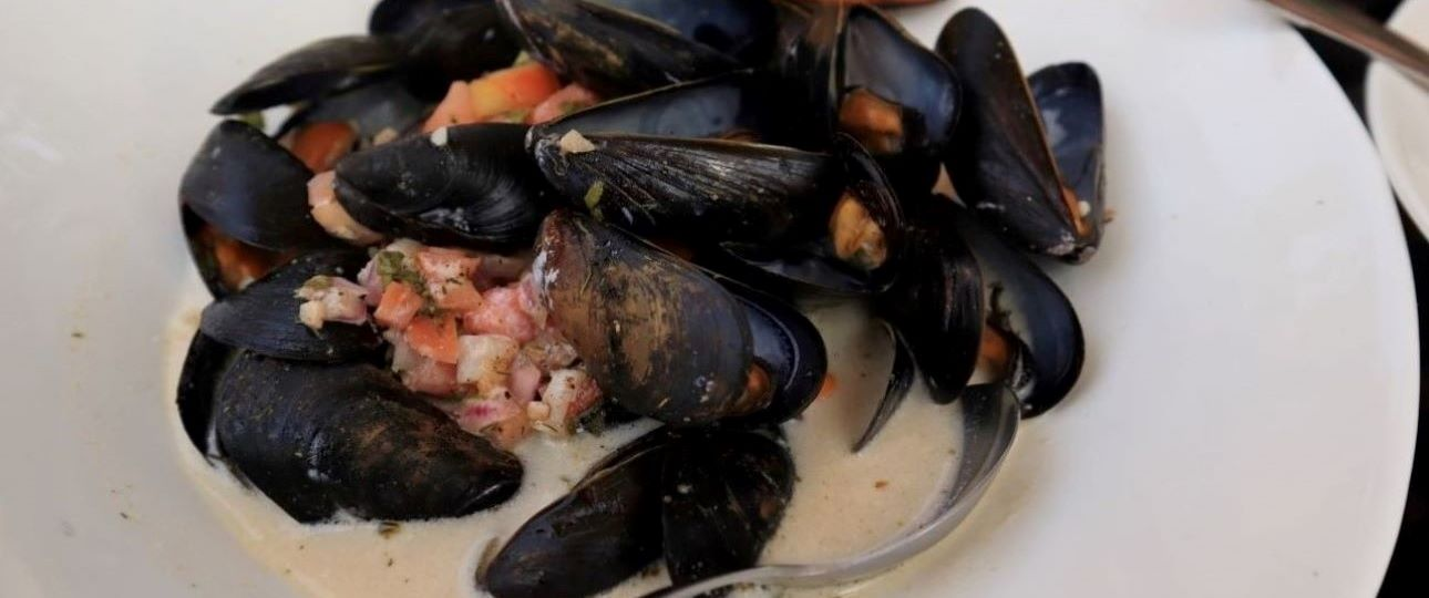 Best Day Trips in Toronto - Mussels in Elora
